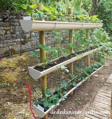 jardin fraise suspendu